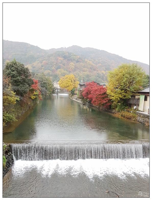 (京都紅葉)20161119日本京都楓葉楓紅最新情報~常寂光寺、貴船口都紅好了、紅滿囉~