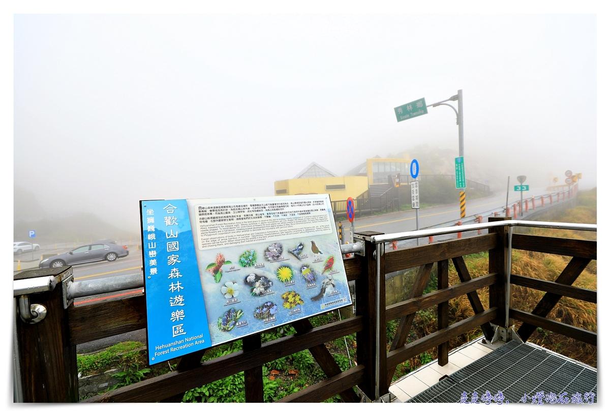 花蓮景點|合歡山3158cafe,台灣最高咖啡館,花蓮、南投交界處,松雪樓入口附近~