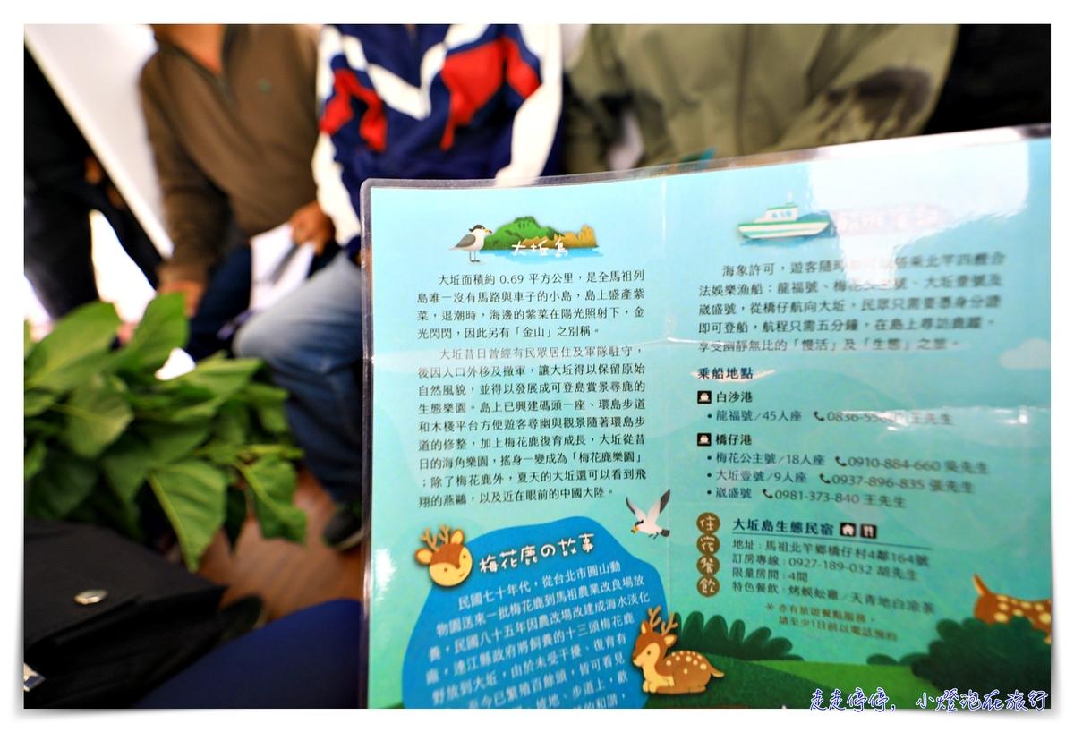 馬祖北竿大坵島梅花鹿|交通、鹿況、以及行程安排、美食及相關注意事項