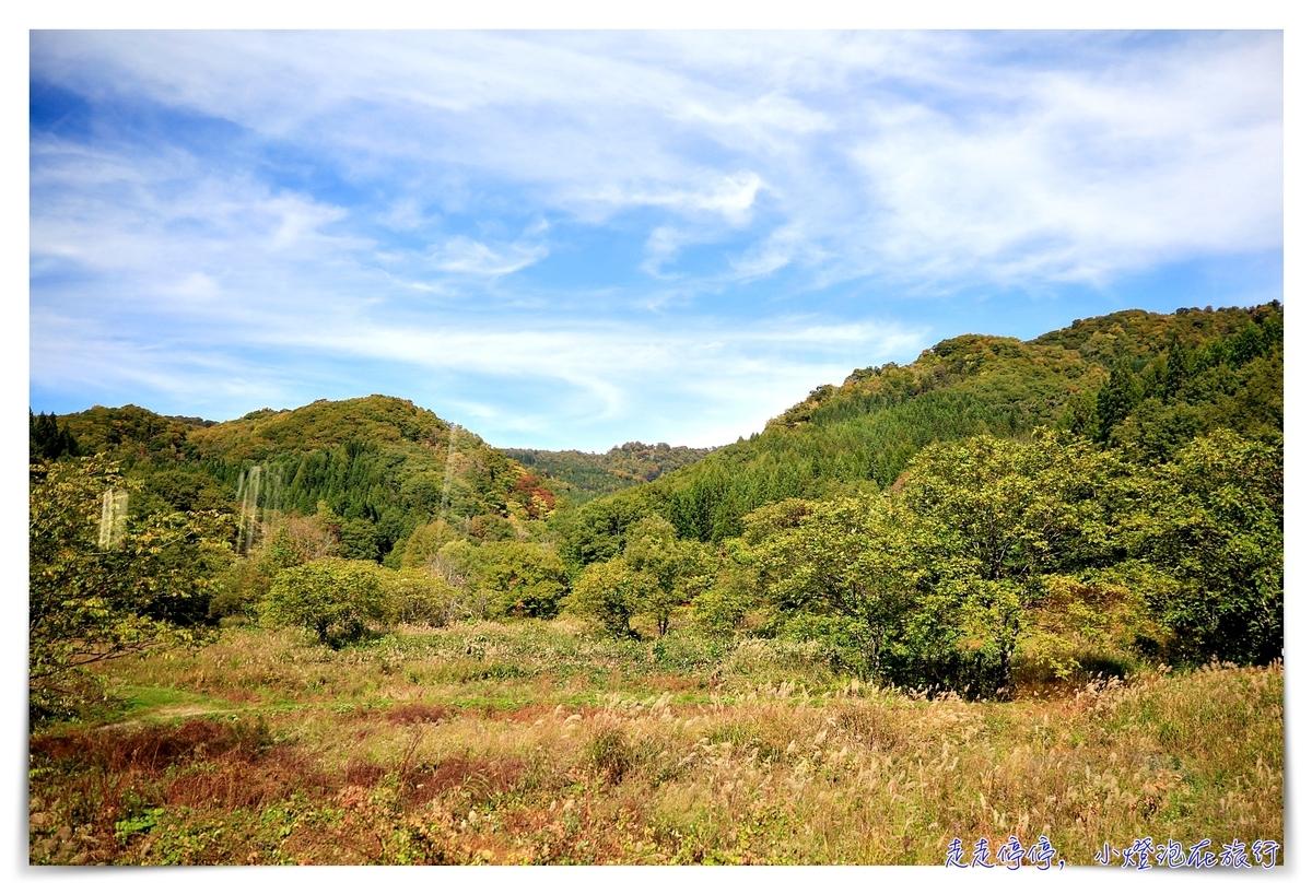 秋田內陸鐵道攻略|秋田內陸線的一抹風景、一頁靜謐、一場與自己最美的陪伴,傳說中的日本微笑鐵路~