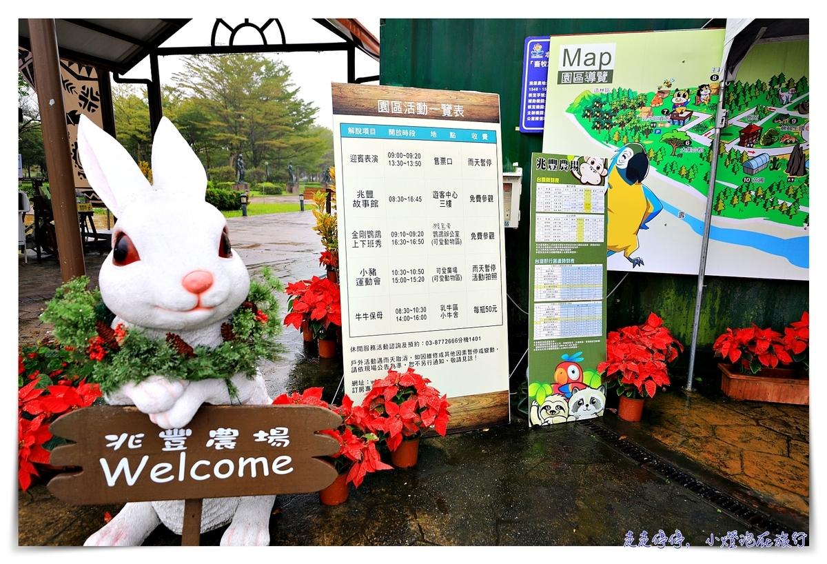 花蓮新光兆豐農場|走出火車站就到的一站式樂園,溫泉、住宿、歐式莊園、小木屋、媲美動物園的園區