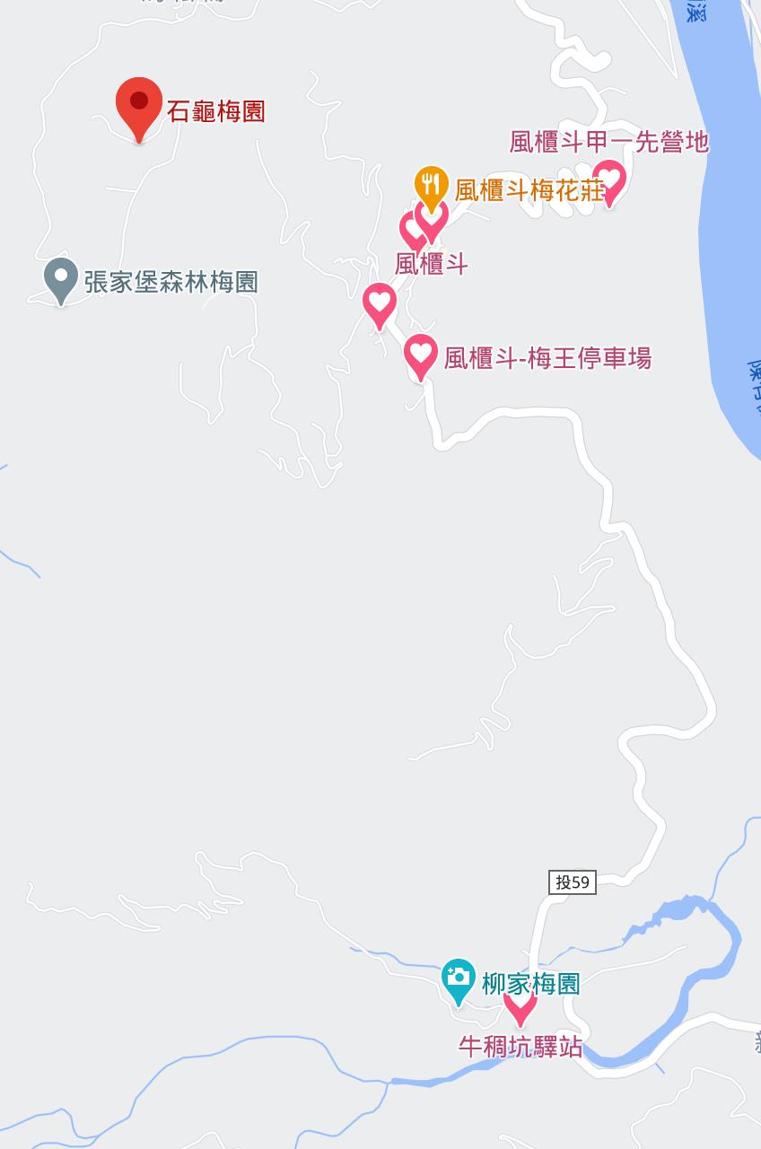 南投信義賞梅|賞梅攻略交通、行程、2021.1月梅況、以及特別注意事項