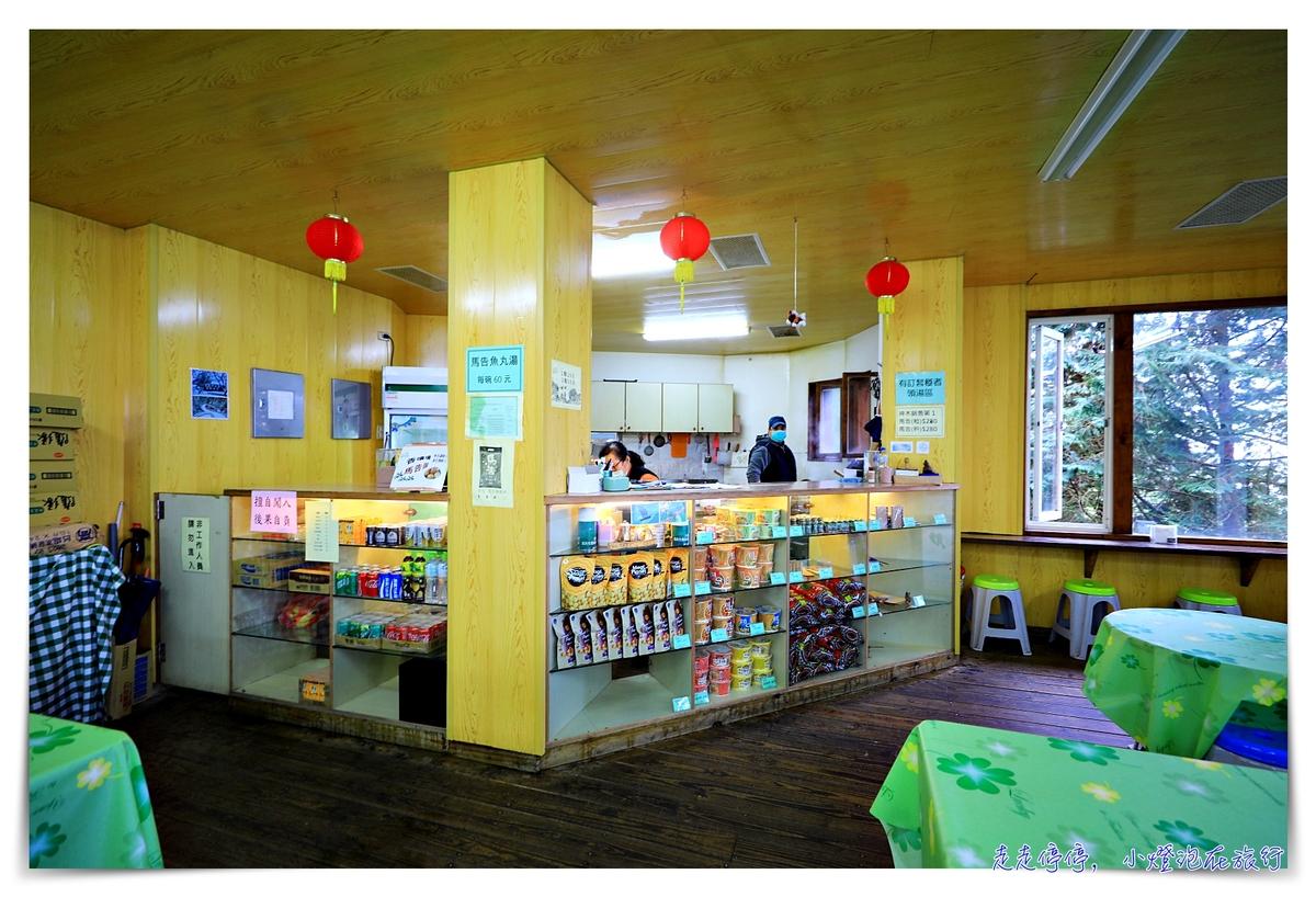 亞洲最大神木園區 棲蘭森林遊樂區神木園區,看見台灣不一樣的價值瑰麗寶藏,中國古人命名的巨大神木,準世遺名單