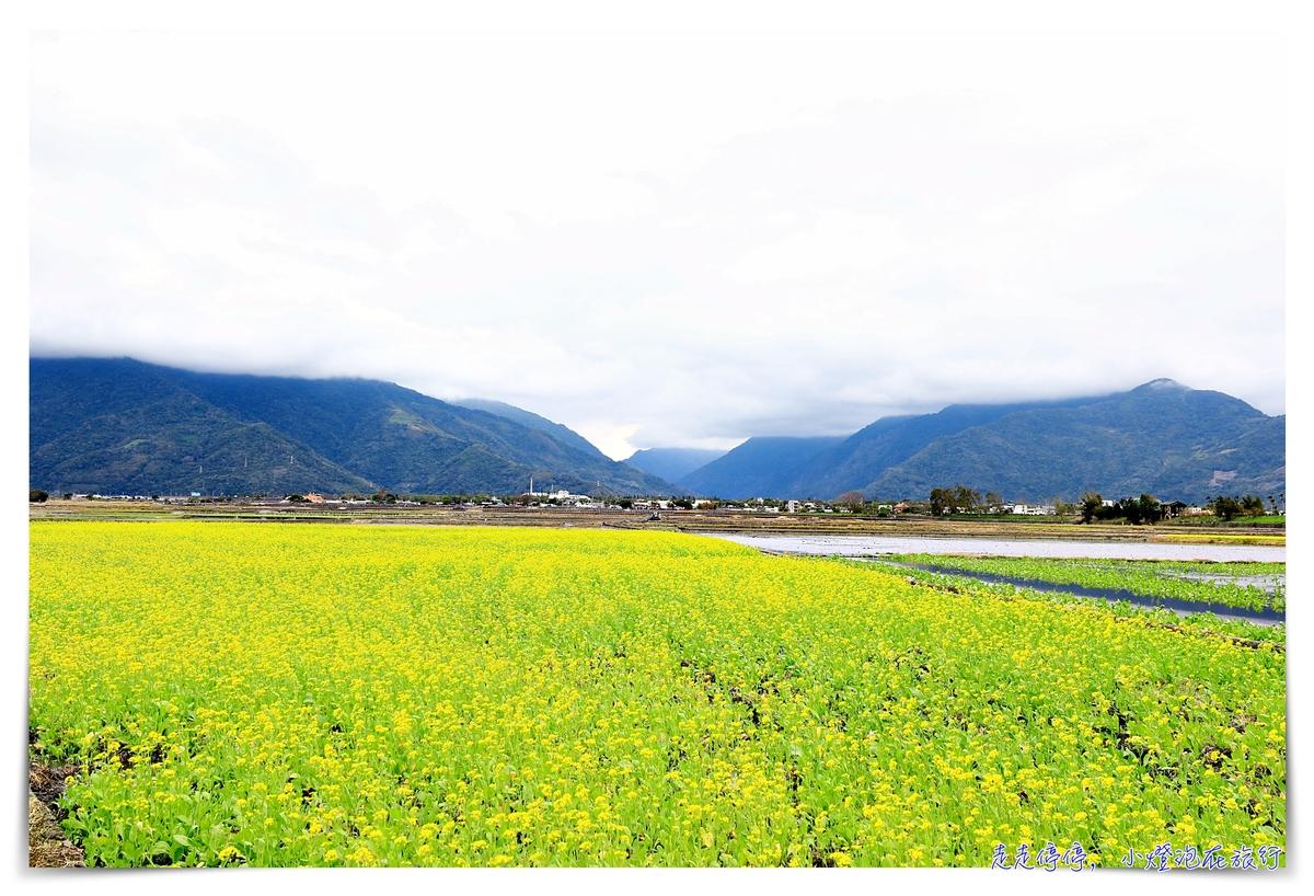 華信環台飛行Day2 台東前往花蓮,小巴串接花東縱谷-關山、池上、瑞穗、光復~