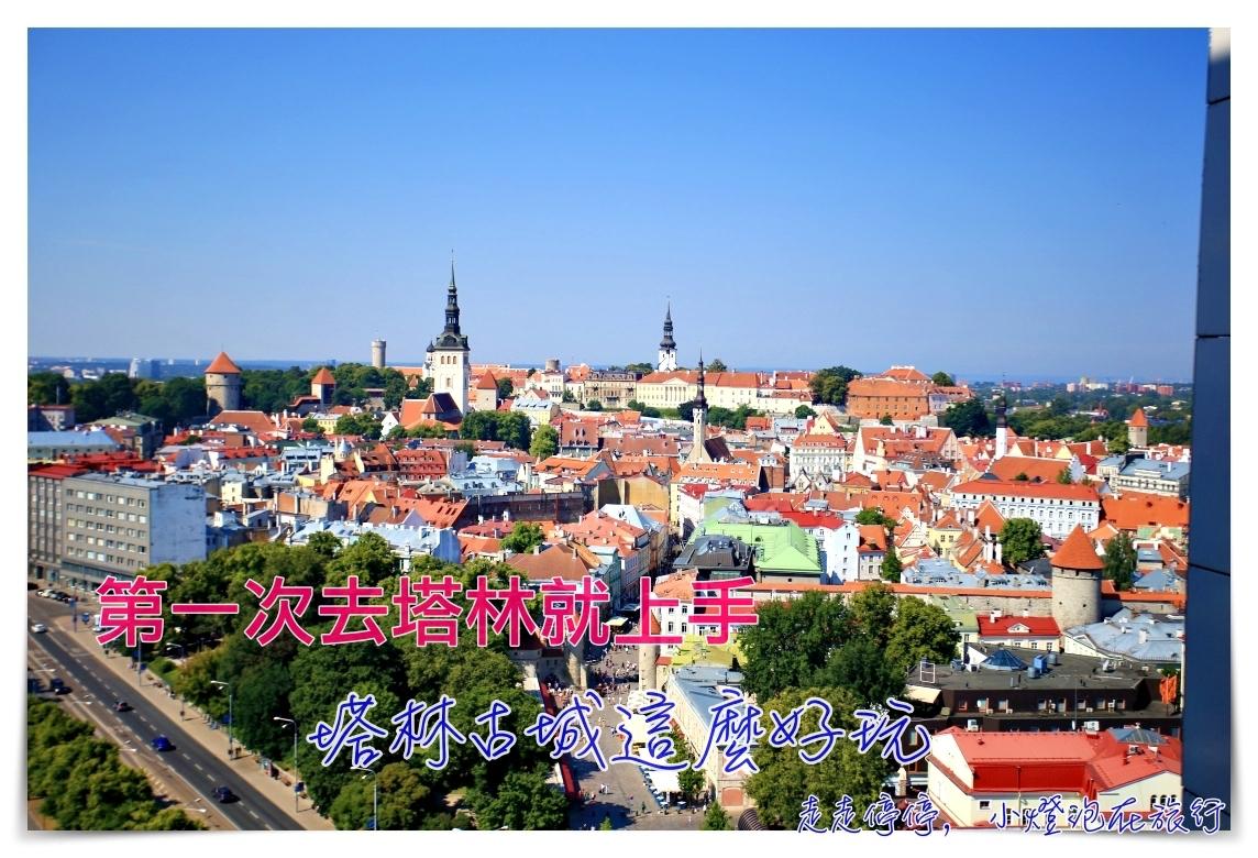 第一次去塔林就上手|愛沙尼亞塔林行程安排、住宿推薦、上網、必吃餐廳美食、必買伴手禮