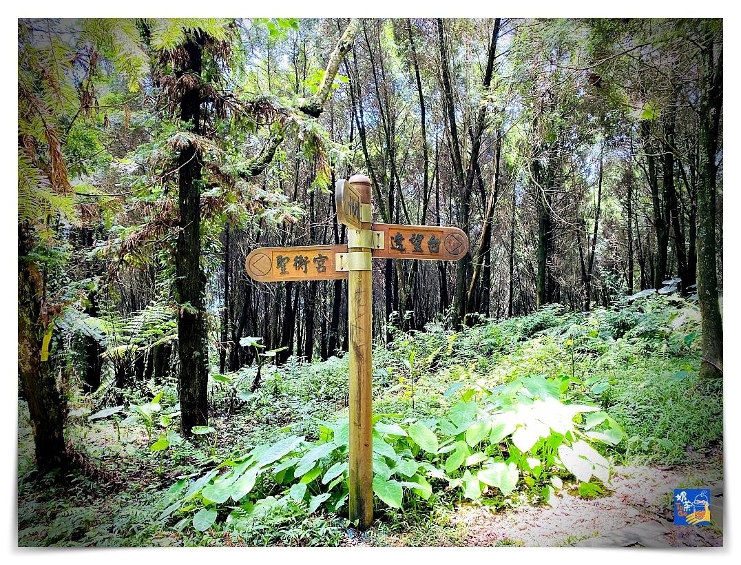 雲洞山莊。沁澐森林|一次看雲海、遠眺苗栗、台中、可健行可舒心放風的山林住宿
