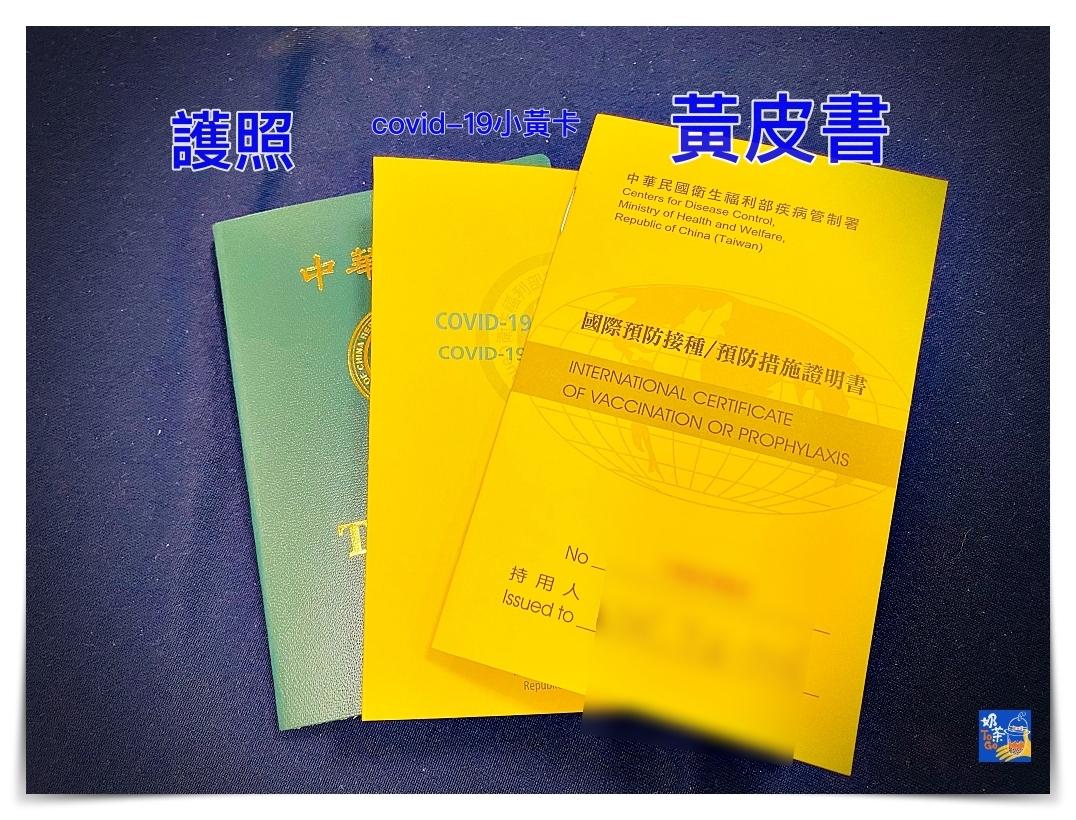 台灣人民出國,covid-19疫苗接種證明方式有三種,請依照目的地國家要求選擇 @走走停停,小燈泡在旅行