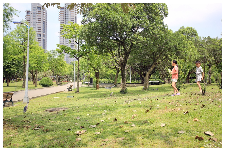 全民瘋野餐|帶孩子走一趟草地、生態、運動、放空都內小旅行吧~萊爾富兔丸集點送~