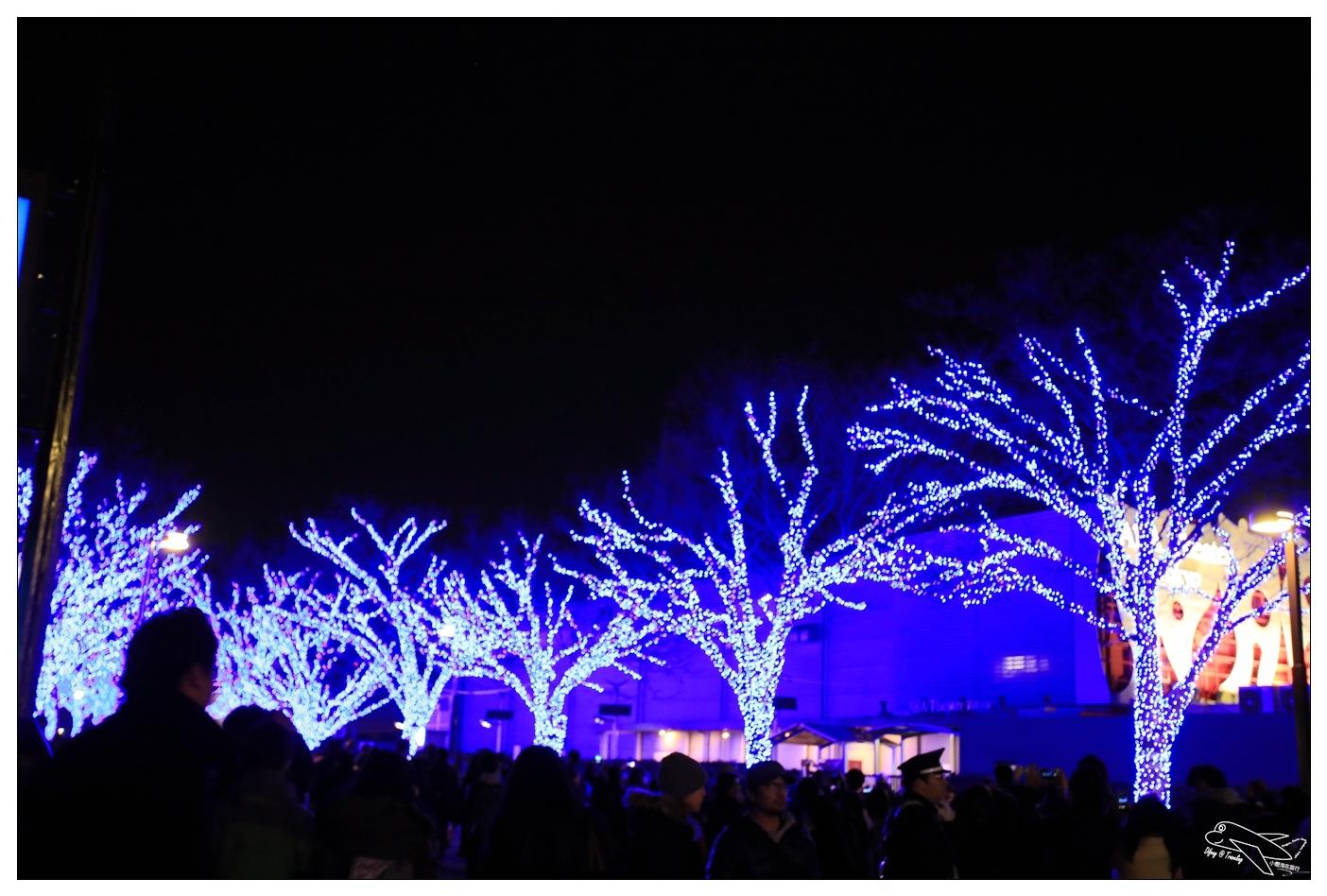 東京涉谷青之洞窟|代代木公園藍色燈海祭。青の洞窟(SHIBUYA)~渋谷交差点~