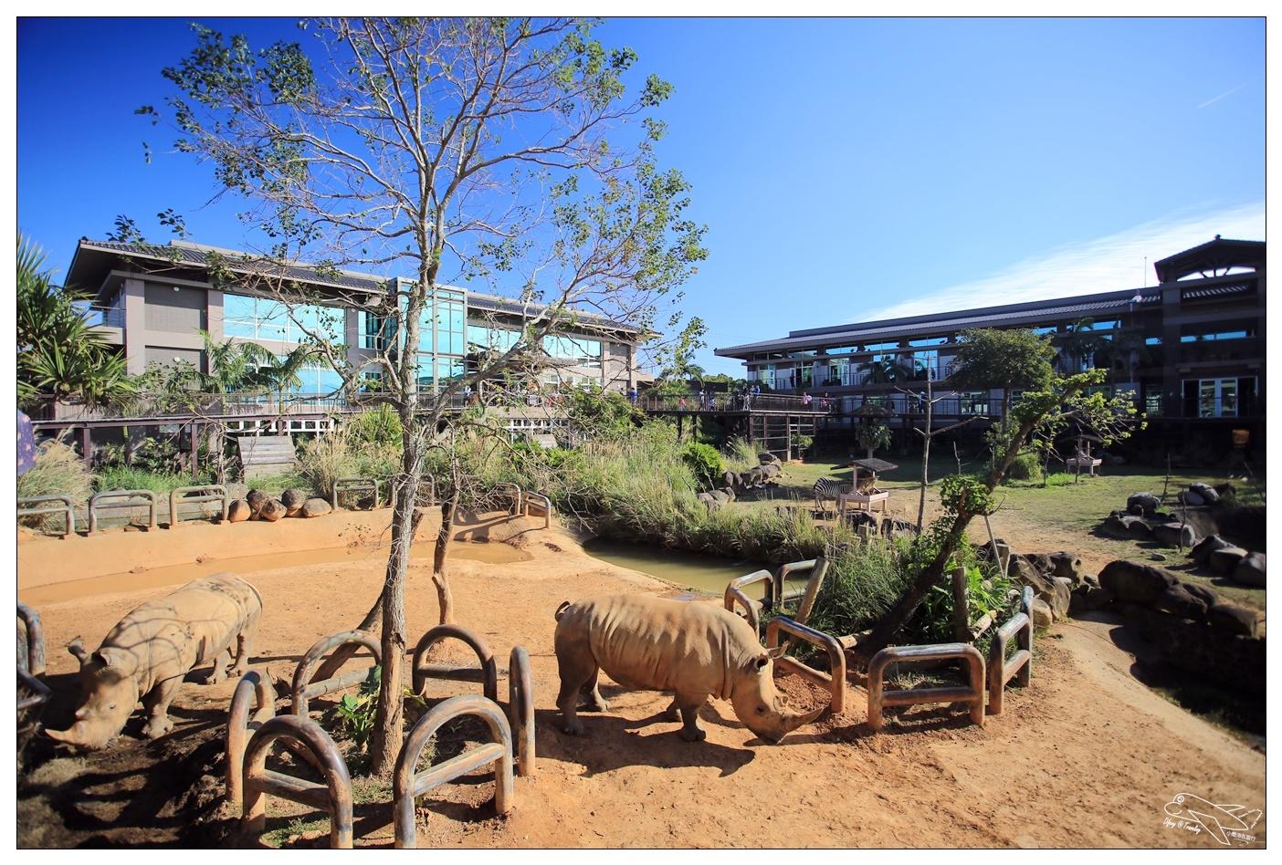 動物飯店|關西六福莊生態親子飯店。亞洲唯一結合自然生態教育與草食性動物渡假飯店~