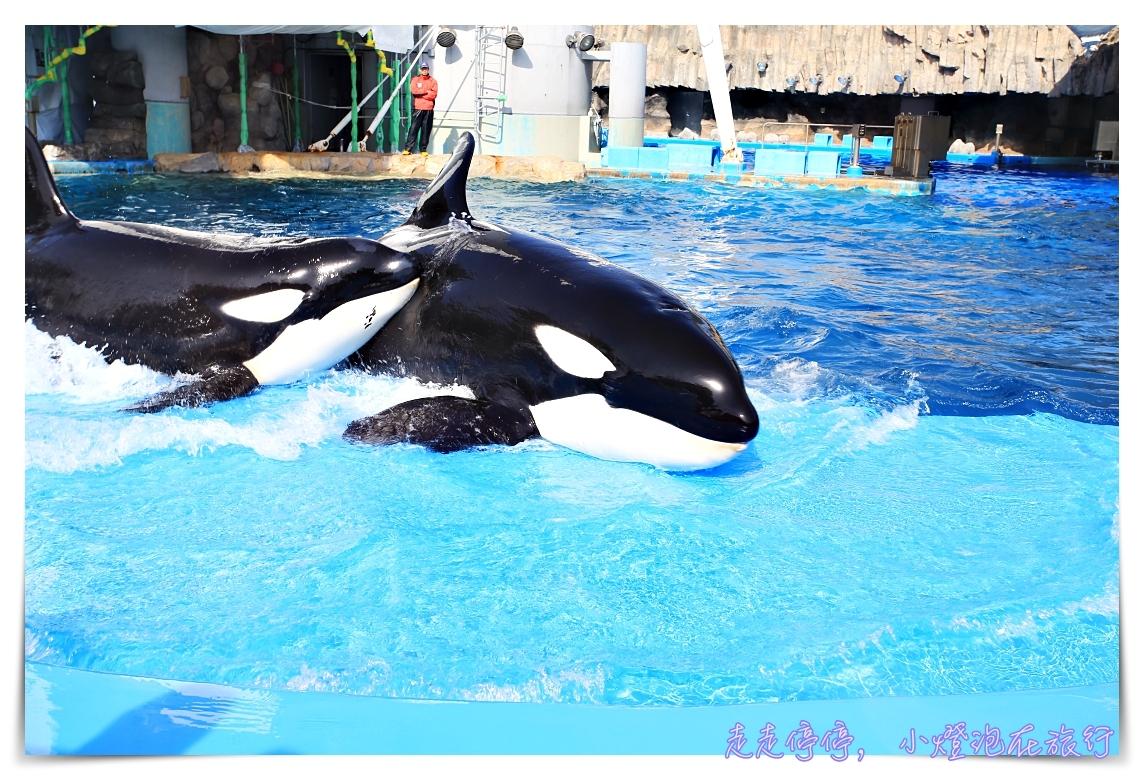 網站近期文章:名古屋港水族館|日本最大海豚虎鯨表演場,親子名古屋歡樂景點~(圖超多。超精彩行程)