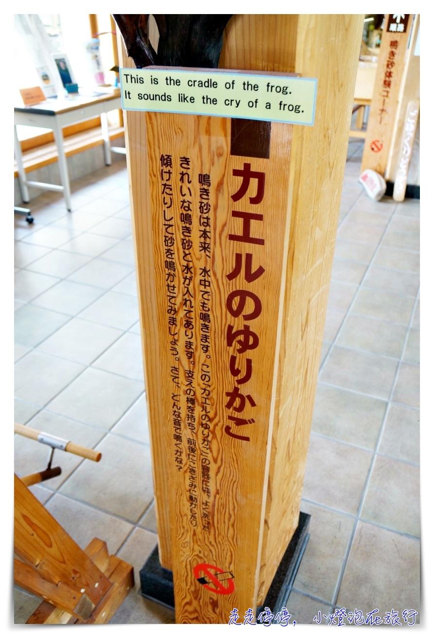 海之京都|京都主題旅。立槳SUP、天橋立、琴引浜沙鳴,無敵療癒行程~