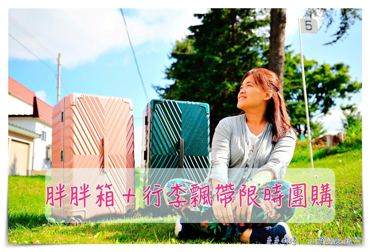 30吋胖胖箱團購|好推拉、堅固、一年保固、終生保修,日本血拼採購行李箱推薦~俐德美行李箱~